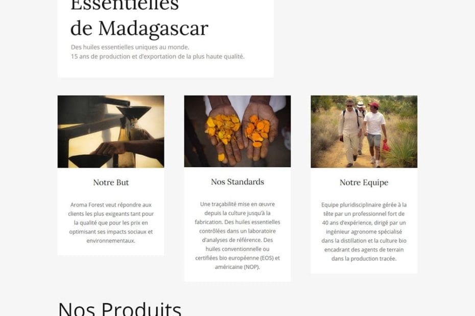 creation du site aroma forest
