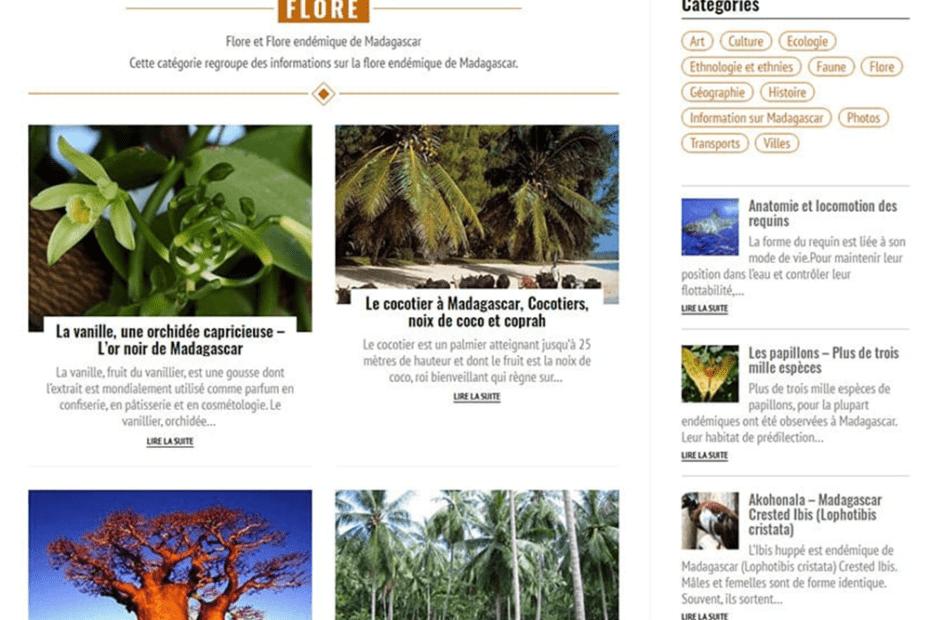 creation du site madagascar vision