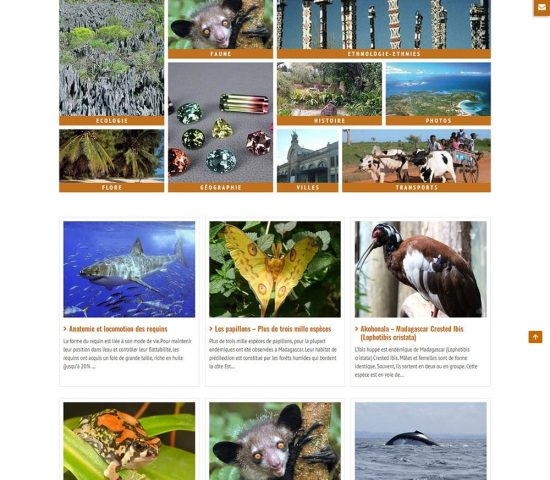 creation du site madagascar vision